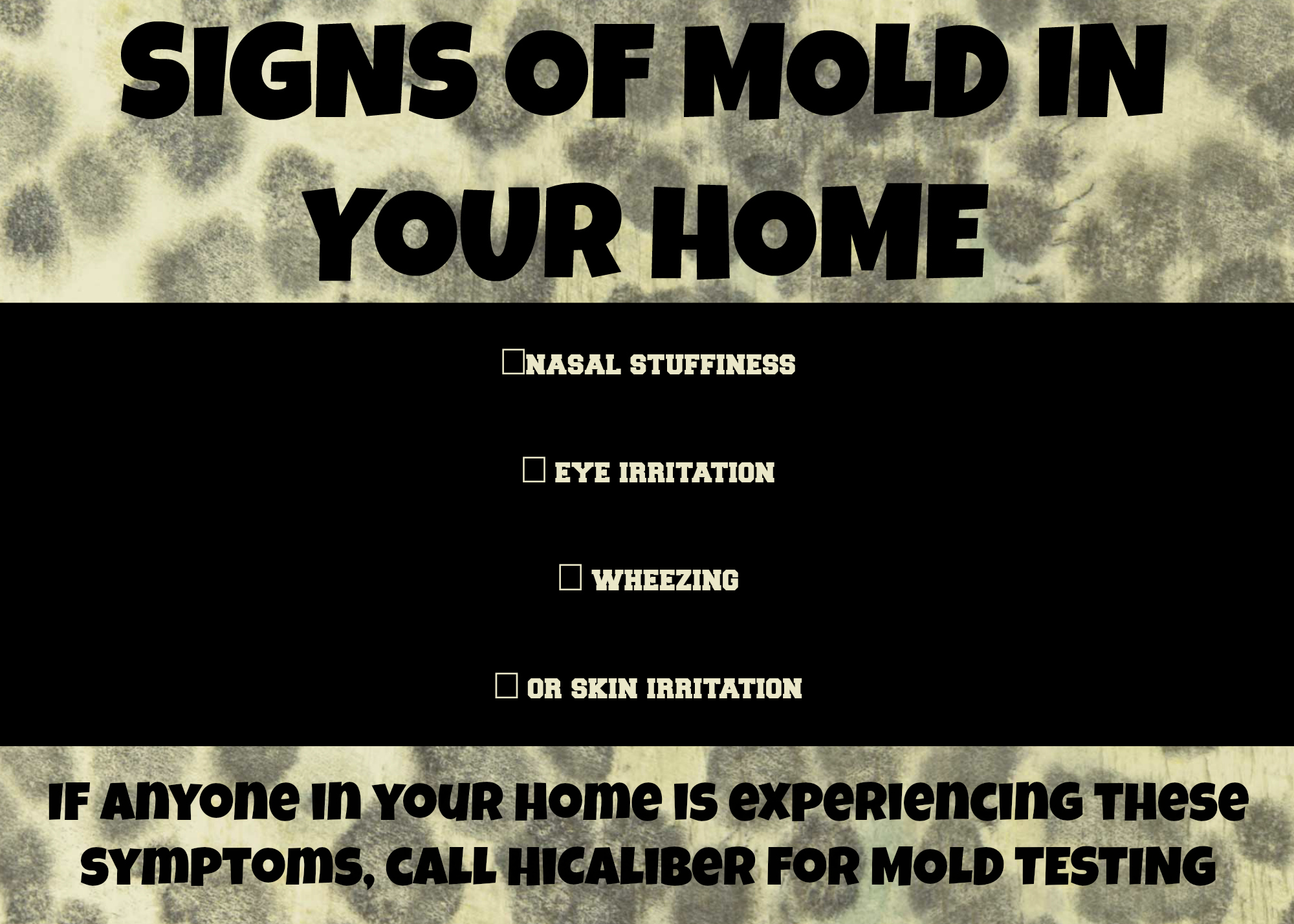 Mold Is Not Something That Should Be Taken Lightly It Can Cause Severe Health Issues If Dealt With By A Professional The Proper Equipment